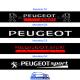 Bandeau Pare soleil Renault Sport Version A